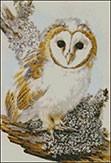 Гоблен - Бяла сова