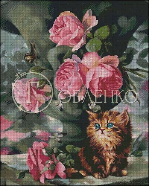 Рози и котка
